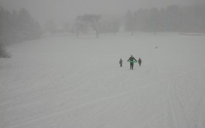 Sledding in a snowstorm